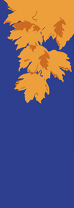 zow 012 Fall Leaves on Blue Fabric