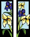 ZOW 305 Iris