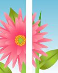 ZOW 500 Big Pink Flower
