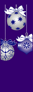 ZOW 911P Blue & Silver Ornaments