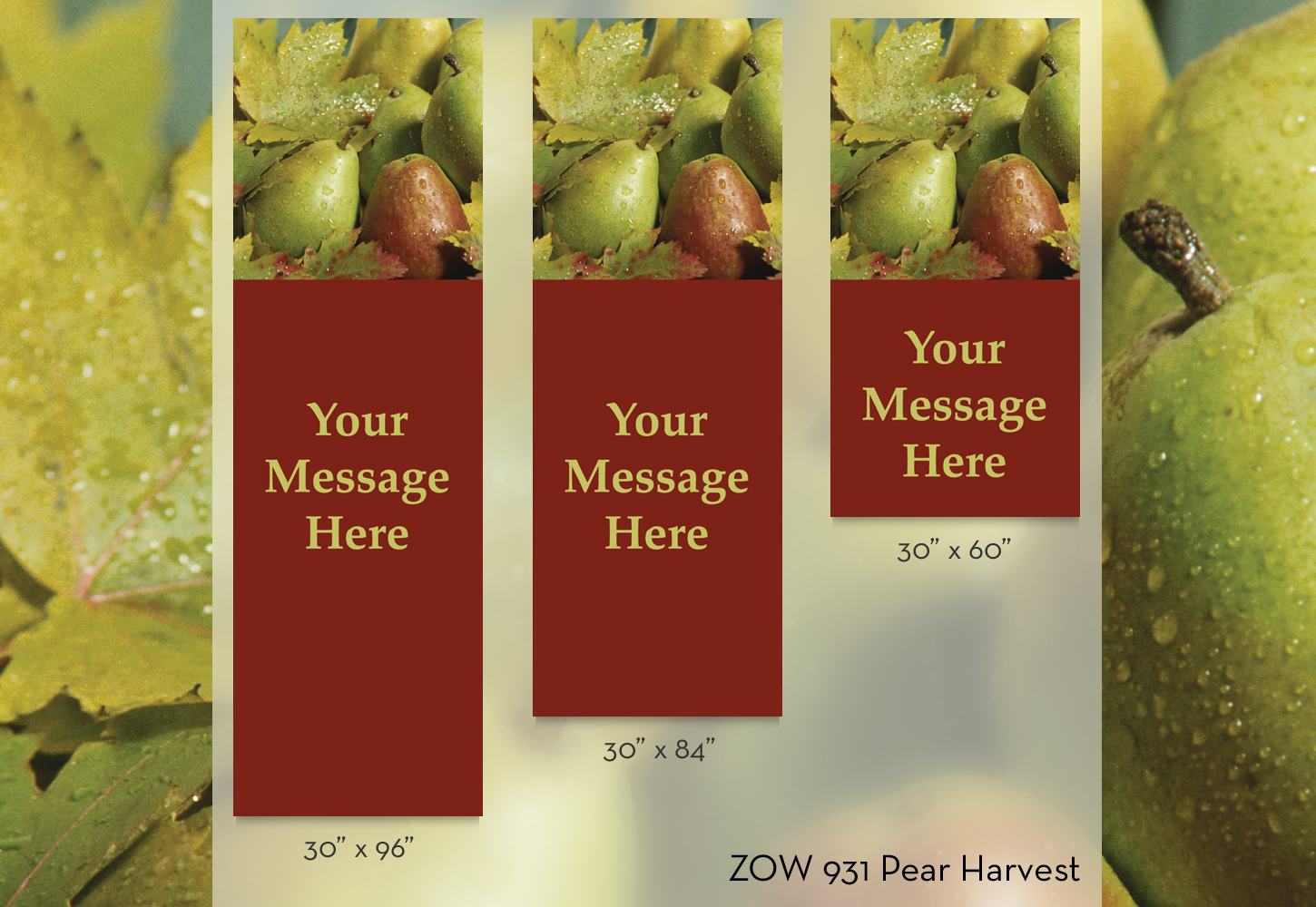 ZOW 931 Pear Harvest