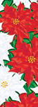 ZOW 994 White & Red Poinsettias