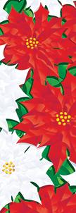 ZOW 994 White & Red Poinsettias